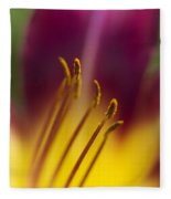 Daylily Abstract Fleece Blanket