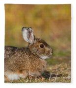 Ddp Djd Snowshoe Hare 98 Fleece Blanket