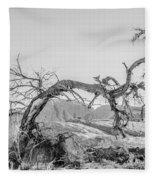 Dead Old Tree Near Monument Valley Arizona Fleece Blanket