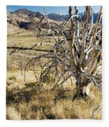 Dead Tree Panorama Fleece Blanket