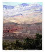 Death Valley 1 Fleece Blanket