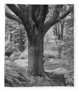 Deciduous Tree Ir Fleece Blanket