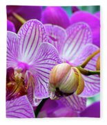 Decorative Fuschia Orchid Still Life Fleece Blanket by Mas Art Studio