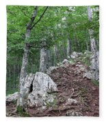 Deep Forest Rocky Path Nature Fleece Blanket