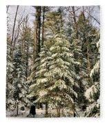 Deep In The Maine Woods Fleece Blanket