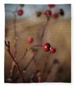 Deep Red Rose Hips On Brown And Blue Fleece Blanket