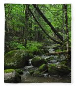 Deep Woods Stream 3 Fleece Blanket