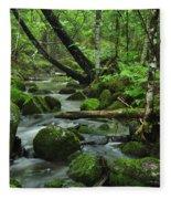 Deep Woods Stream Fleece Blanket