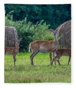 Deer In A Hay Field Fleece Blanket