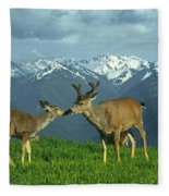 Ma-181-deer In Love  Fleece Blanket