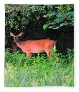 Deer In Overhang Of Trees Fleece Blanket