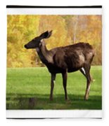 Deer In The Wild Fleece Blanket