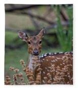 Deer V5 Fleece Blanket