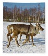 Deers Running On Snow Fleece Blanket