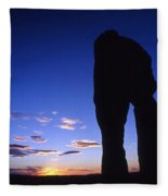 Delicate Arch At Twilight Fleece Blanket
