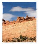 Delicate Arch Famous Landmark In Arches National Park Utah Fleece Blanket