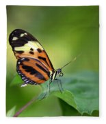 Delicate Butterfly Fleece Blanket