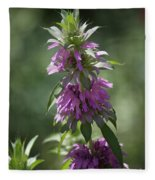 Delicate Desert Flower Fleece Blanket