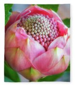 Delicate Pink Bud Waratah Flower Fleece Blanket