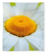 Delightful Daisy Fleece Blanket