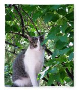 Demure Kitty Fleece Blanket
