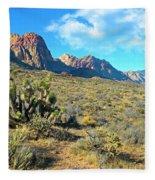 Desert Beauty Fleece Blanket