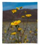 Desert Blooms Fleece Blanket