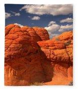 Desert Brain Rocks Fleece Blanket