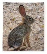 Desert Cottontail 1822 Fleece Blanket
