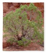 Desert Elements 6 Fleece Blanket