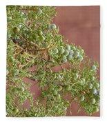 Desert Elements 7 Fleece Blanket