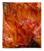 Desert Fire Fleece Blanket
