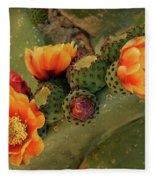 Desert Flame Fleece Blanket