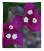 Desert Flower 2 Fleece Blanket
