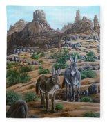 Desert Gypsy's Fleece Blanket