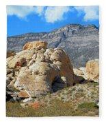Desert Hikers Fleece Blanket