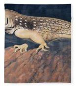 Desert Iguana Mural Fleece Blanket