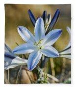 Desert Lily Fleece Blanket