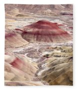 Desert Palette Fleece Blanket