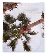 Desert Palm Fleece Blanket