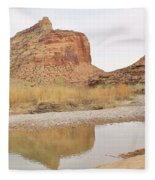 Desert Reflections 2 Fleece Blanket