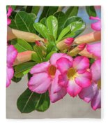 Desert Rose Or Chuanchom Dthb2106 Fleece Blanket