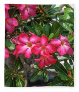 Desert Rose Or Chuanchom Dthb2107 Fleece Blanket