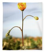 Desert Sun Flower Fleece Blanket