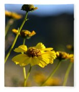 Desert Sunflower Fleece Blanket