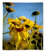 Desert Sunflower Variations Fleece Blanket