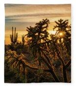 Desert Sunshine Shining Through  Fleece Blanket