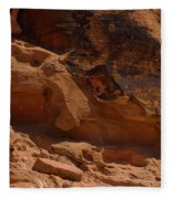 Desert Varnish Petroglyphs Valley Of Fire Fleece Blanket
