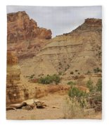 Desert Wash Fleece Blanket