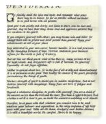 Desiderata 17 Fleece Blanket